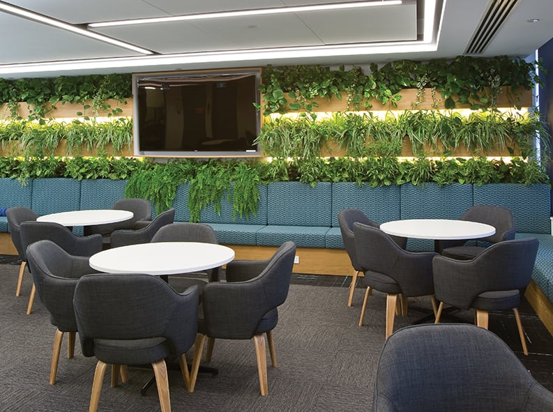 Why Office Fit Out Companies are Bringing the Outdoors In / Formula Interiors
