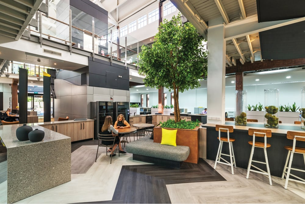 Why Office Fit Out Companies are Bringing the Outdoors In