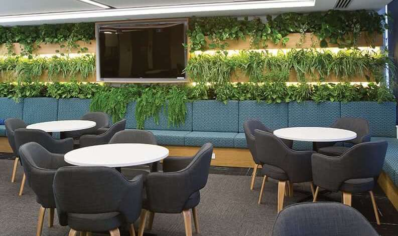 What to Consider When Planning an Eco-Friendly Office Fitout