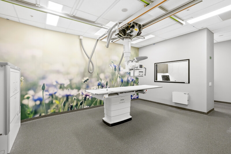 Tips For Creating Clinical Fit Outs to Improve Patient Experience / Formula Interiors